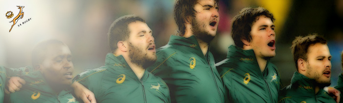 South Africa Springboks Depth Chart Rugby