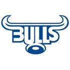Northern Bulls