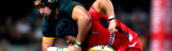 Victor Matfield Matthew Morgan Wales South Africa Springboks Rugby
